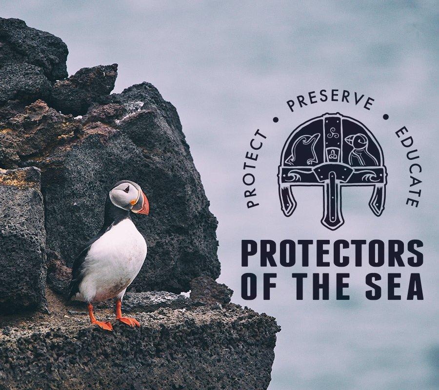 Hand illustrated logo for protectors of the sea charity of a viking helmet with a puffin and dolphin engraved into it